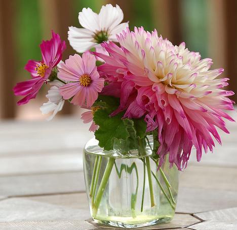 用鲜花打造家居好风水