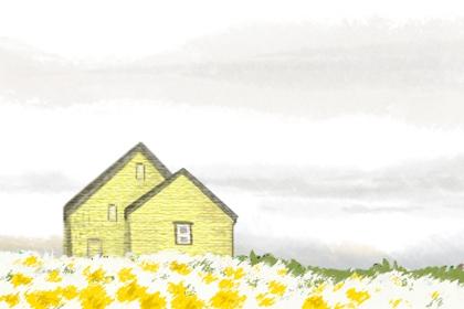 家里水仙花摆放风水
