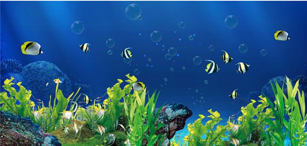 鱼缸背景选择什么图案对风水好
